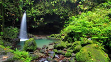 Dominica is covered in beautiful ecotourism locales.
