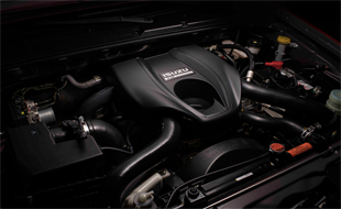 3.0L VGS Turbo Engine